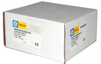 IC200ALG263